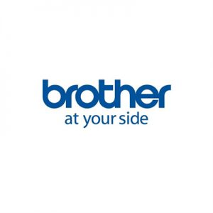 Brother Papel 10 Rollos Ancho 102mmx50mm